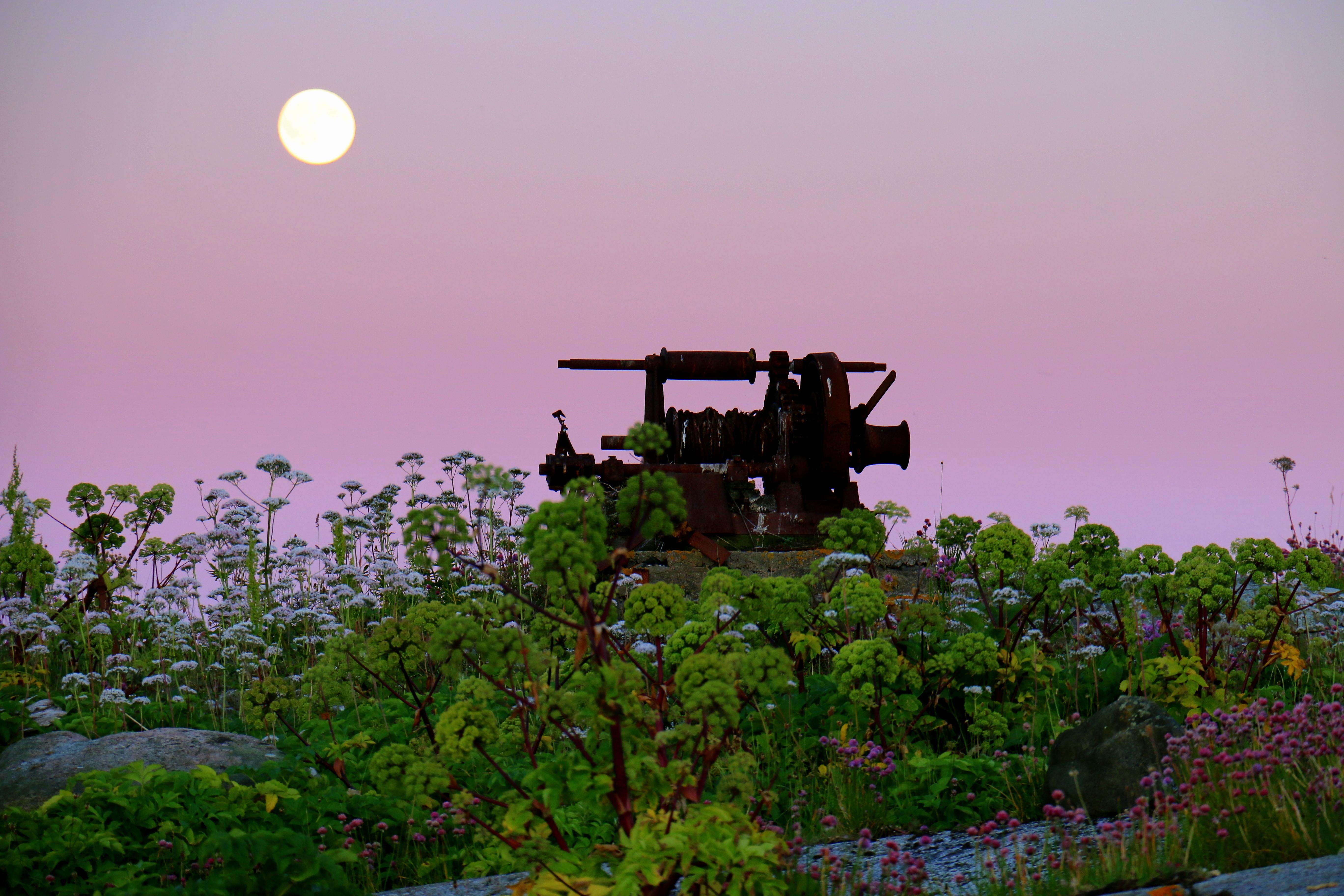 Maskin och måne Hälsö